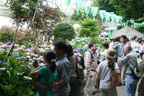 花ギフト フラワーギフト 誕生日 花 カノシェ話題 スタンド花 ウエディングブーケ 花束 花屋 たくさん