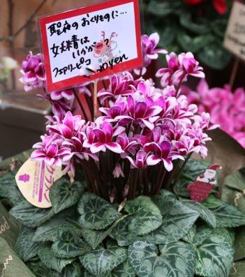 花ギフト|フラワーギフト|誕生日 花|カノシェ話題|スタンド花|ウエディングブーケ|花束|花屋|IMG_5645