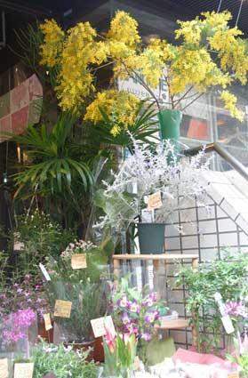 花ギフト|フラワーギフト|誕生日 花|カノシェ話題|スタンド花|ウエディングブーケ|花束|花屋|78f56ca3