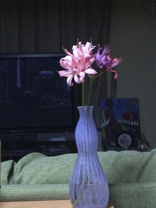 花ギフト|フラワーギフト|誕生日 花|カノシェ話題|スタンド花|ウエディングブーケ|花束|花屋|IMG_7318