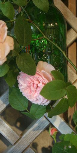 花ギフト|フラワーギフト|誕生日 花|カノシェ話題|スタンド花|ウエディングブーケ|花束|花屋|バーバラオースティン