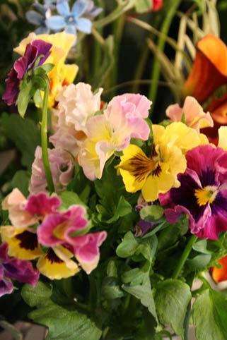 花ギフト|フラワーギフト|誕生日 花|カノシェ話題|スタンド花|ウエディングブーケ|花束|花屋|IMG_6054