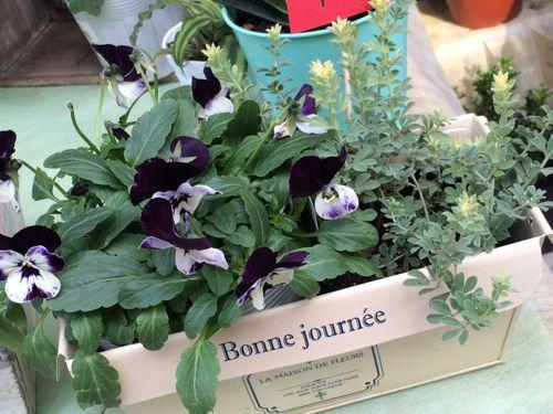 花ギフト|フラワーギフト|誕生日 花|カノシェ話題|スタンド花|ウエディングブーケ|花束|花屋|IMG_8912