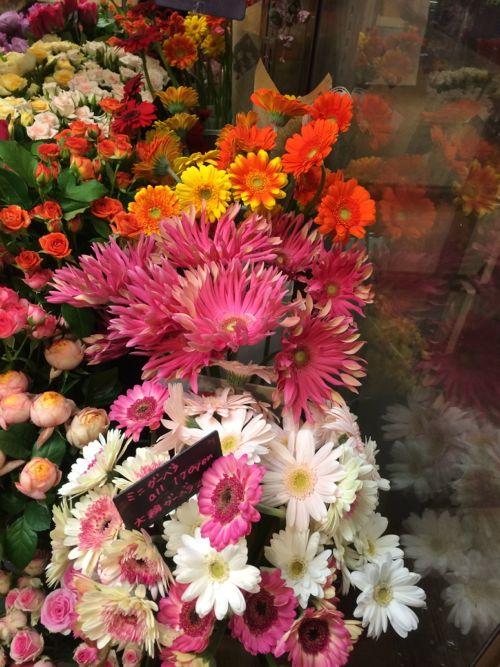 花ギフト|フラワーギフト|誕生日 花|カノシェ話題|スタンド花|ウエディングブーケ|花束|花屋|IMG_7980