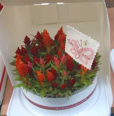 花ギフト|フラワーギフト|誕生日 花|カノシェ話題|スタンド花|ウエディングブーケ|花束|花屋|キャンドルケーキ