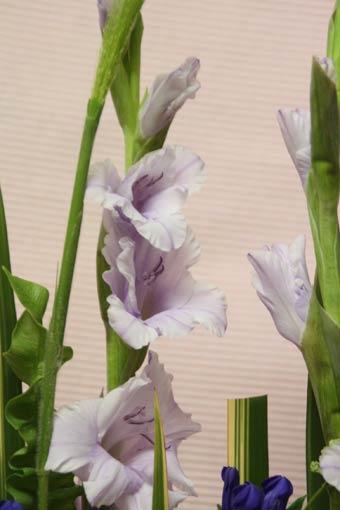 花ギフト|フラワーギフト|誕生日 花|カノシェ話題|スタンド花|ウエディングブーケ|花束|花屋|IMG_4069