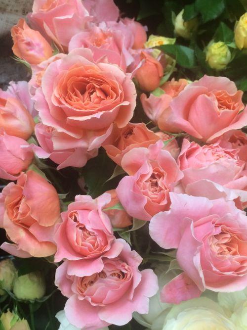 花ギフト|フラワーギフト|誕生日 花|カノシェ話題|スタンド花|ウエディングブーケ|花束|花屋|IMG_8103
