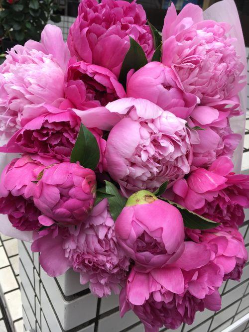 花ギフト|フラワーギフト|誕生日 花|カノシェ話題|スタンド花|ウエディングブーケ|花束|花屋|IMG_1469