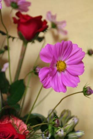 花ギフト|フラワーギフト|誕生日 花|カノシェ話題|スタンド花|ウエディングブーケ|花束|花屋|IMG_9955