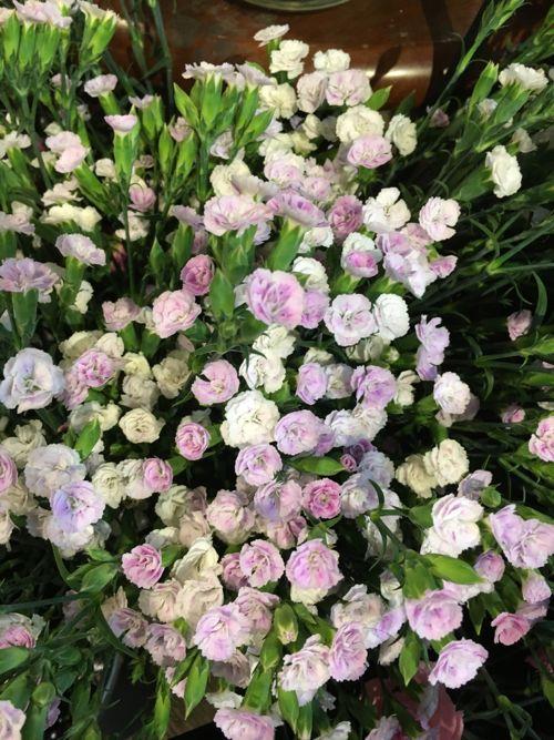花ギフト|フラワーギフト|誕生日 花|カノシェ話題|スタンド花|ウエディングブーケ|花束|花屋|IMG_0477