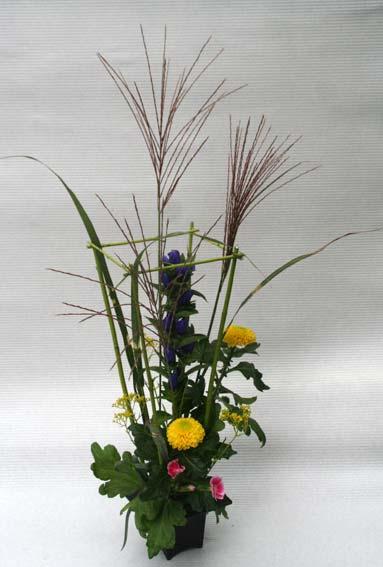 花ギフト|フラワーギフト|誕生日 花|カノシェ話題|スタンド花|ウエディングブーケ|花束|花屋|koharasan-t