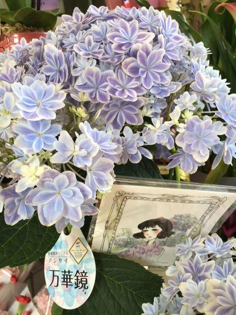花ギフト|フラワーギフト|誕生日 花|カノシェ話題|スタンド花|ウエディングブーケ|花束|花屋|IMG_1128(1)