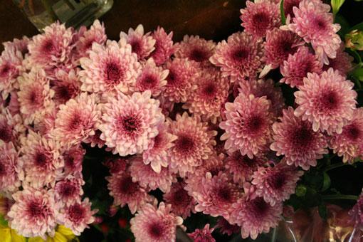 花ギフト|フラワーギフト|誕生日 花|カノシェ話題|スタンド花|ウエディングブーケ|花束|花屋|IMG_0374