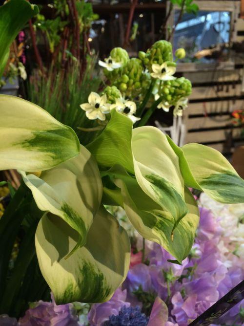 花ギフト|フラワーギフト|誕生日 花|カノシェ話題|スタンド花|ウエディングブーケ|花束|花屋|IMG_9170