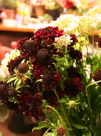 花ギフト フラワーギフト 誕生日 花 カノシェ話題 スタンド花 ウエディングブーケ 花束 花屋 すかび