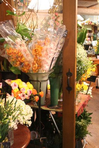 花ギフト|フラワーギフト|誕生日 花|カノシェ話題|スタンド花|ウエディングブーケ|花束|花屋|入り口
