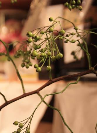花ギフト|フラワーギフト|誕生日 花|カノシェ話題|スタンド花|ウエディングブーケ|花束|花屋|IMG_4323