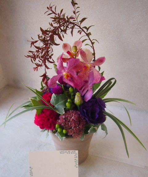 花ギフト|フラワーギフト|誕生日 花|カノシェ話題|スタンド花|ウエディングブーケ|花束|花屋|50647