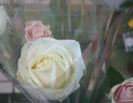 花ギフト|フラワーギフト|誕生日 花|カノシェ話題|スタンド花|ウエディングブーケ|花束|花屋|妻2