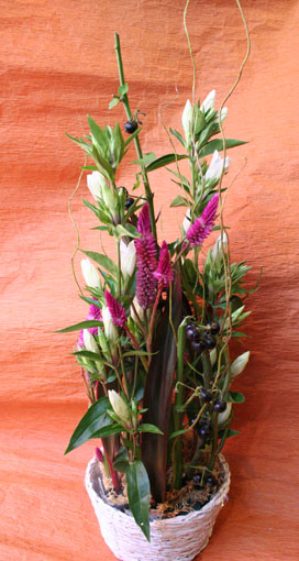 花ギフト|フラワーギフト|誕生日 花|カノシェ話題|スタンド花|ウエディングブーケ|花束|花屋|emikosan-black