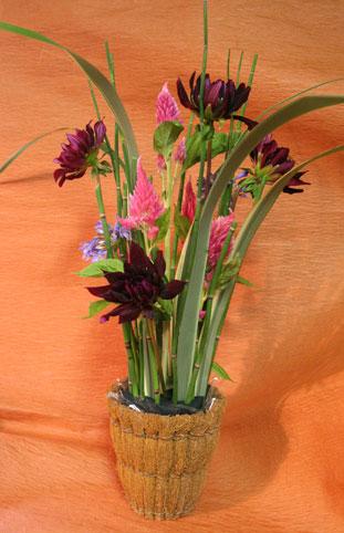 花ギフト|フラワーギフト|誕生日 花|カノシェ話題|スタンド花|ウエディングブーケ|花束|花屋|ちよこさん ダリア