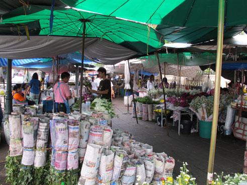 花ギフト|フラワーギフト|誕生日 花|カノシェ話題|スタンド花|ウエディングブーケ|花束|花屋|テント
