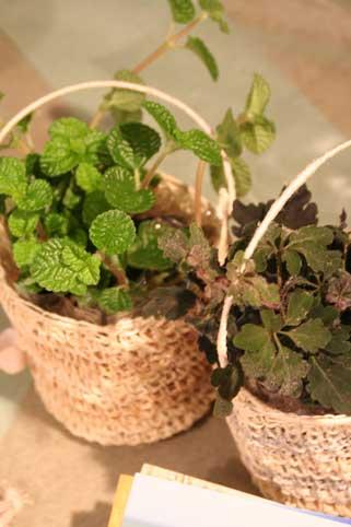 花ギフト|フラワーギフト|誕生日 花|カノシェ話題|スタンド花|ウエディングブーケ|花束|花屋|カンヨウ1
