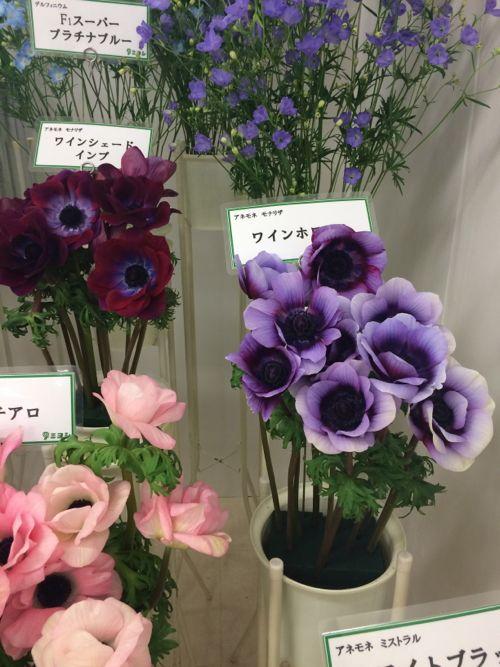 花ギフト|フラワーギフト|誕生日 花|カノシェ話題|スタンド花|ウエディングブーケ|花束|花屋|IMG_7068