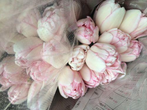 花ギフト|フラワーギフト|誕生日 花|カノシェ話題|スタンド花|ウエディングブーケ|花束|花屋|IMG_9914