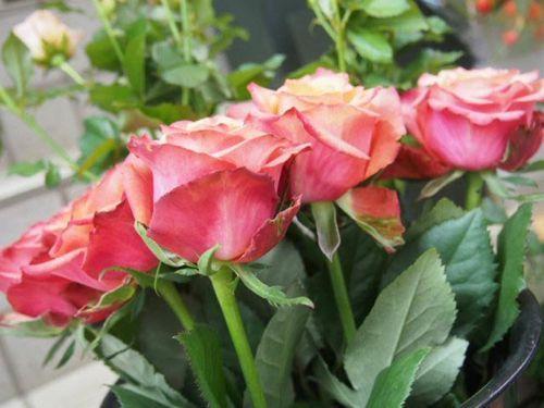 花ギフト|フラワーギフト|誕生日 花|カノシェ話題|スタンド花|ウエディングブーケ|花束|花屋|PA166646