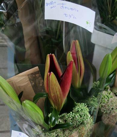 花ギフト|フラワーギフト|誕生日 花|カノシェ話題|スタンド花|ウエディングブーケ|花束|花屋|IMG_8285