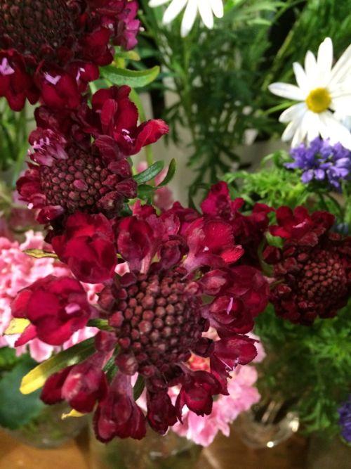 花ギフト|フラワーギフト|誕生日 花|カノシェ話題|スタンド花|ウエディングブーケ|花束|花屋|IMG_9165