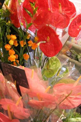 花ギフト|フラワーギフト|誕生日 花|カノシェ話題|スタンド花|ウエディングブーケ|花束|花屋|ansu