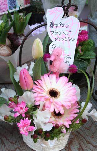花ギフト|フラワーギフト|誕生日 花|カノシェ話題|スタンド花|ウエディングブーケ|花束|花屋|フラミンゴ