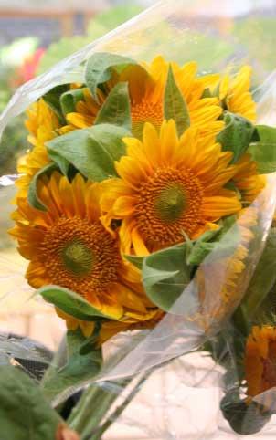 花ギフト|フラワーギフト|誕生日 花|カノシェ話題|スタンド花|ウエディングブーケ|花束|花屋|サンリッチフレッシュ