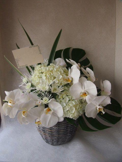 花ギフト|フラワーギフト|誕生日 花|カノシェ話題|スタンド花|ウエディングブーケ|花束|花屋|56231