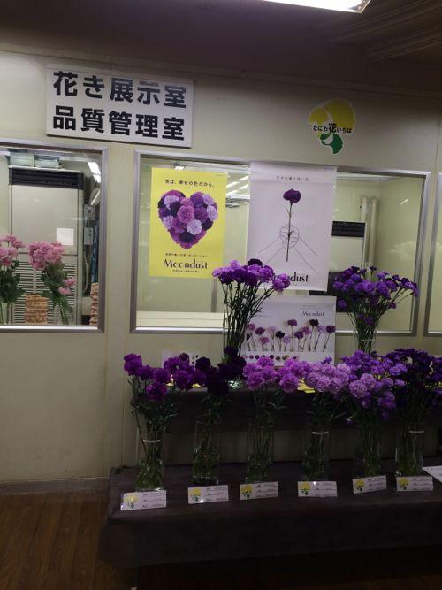 花ギフト|フラワーギフト|誕生日 花|カノシェ話題|スタンド花|ウエディングブーケ|花束|花屋|IMG_7028