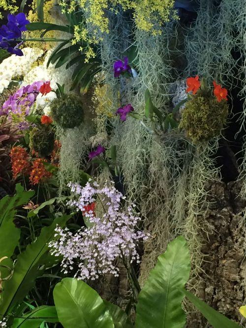 花ギフト|フラワーギフト|誕生日 花|カノシェ話題|スタンド花|ウエディングブーケ|花束|花屋|IMG_9411