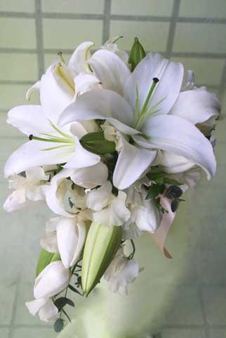 花ギフト|フラワーギフト|誕生日 花|カノシェ話題|スタンド花|ウエディングブーケ|花束|花屋|アニ1