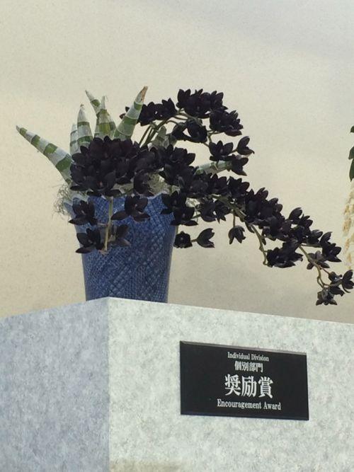 花ギフト|フラワーギフト|誕生日 花|カノシェ話題|スタンド花|ウエディングブーケ|花束|花屋|IMG_9483