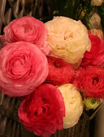 花ギフト フラワーギフト 誕生日 花 カノシェ話題 スタンド花 ウエディングブーケ 花束 花屋 ラナン