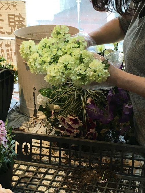 花ギフト|フラワーギフト|誕生日 花|カノシェ話題|スタンド花|ウエディングブーケ|花束|花屋|IMG_1256