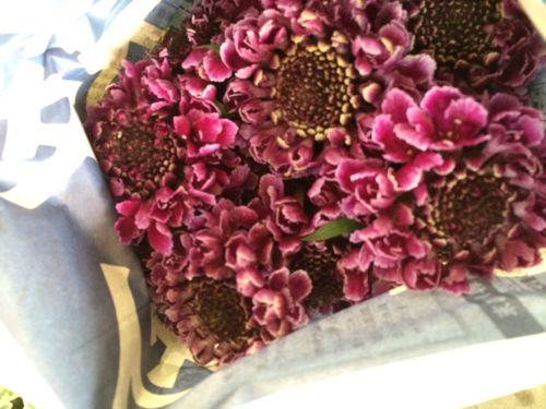 花ギフト|フラワーギフト|誕生日 花|カノシェ話題|スタンド花|ウエディングブーケ|花束|花屋|IMG_5108