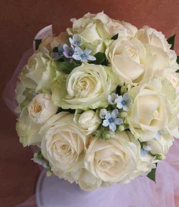 花ギフト|フラワーギフト|誕生日 花|カノシェ話題|スタンド花|ウエディングブーケ|花束|花屋|タムラウンド
