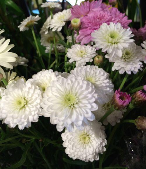 花ギフト|フラワーギフト|誕生日 花|カノシェ話題|スタンド花|ウエディングブーケ|花束|花屋|IMG_4183