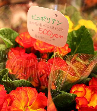 花ギフト|フラワーギフト|誕生日 花|カノシェ話題|スタンド花|ウエディングブーケ|花束|花屋|5