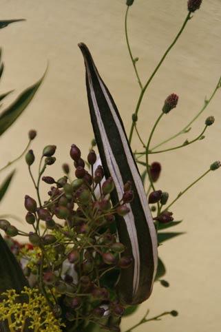 花ギフト|フラワーギフト|誕生日 花|カノシェ話題|スタンド花|ウエディングブーケ|花束|花屋|IMG_9491