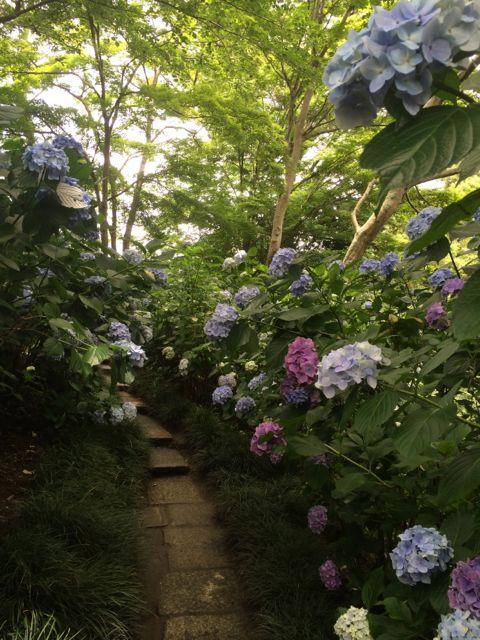 花ギフト|フラワーギフト|誕生日 花|カノシェ話題|スタンド花|ウエディングブーケ|花束|花屋|IMG_1752