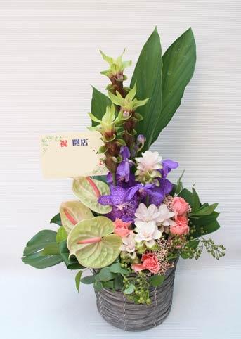 花ギフト|フラワーギフト|誕生日 花|カノシェ話題|スタンド花|ウエディングブーケ|花束|花屋|ジーンズショップ様