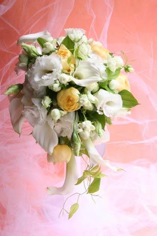 花ギフト|フラワーギフト|誕生日 花|カノシェ話題|スタンド花|ウエディングブーケ|花束|花屋|東郷記念館 カラー